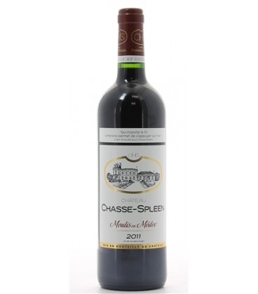 Château Chasse-Pleen